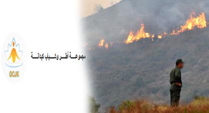 بلاغ للرأي العام حول تداعيات حريق غابة كبدانة بإقليم الناظور