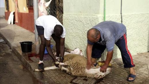 حكومة مليلية تعلن إقامة عيد الأضحى دون صلاة جماعية وترفع عدد خيم ذبح الأضاحي