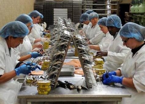 اكتشاف أزيد من 170 إصابة في بؤر مصنع رونو ومعمل لتصبير السمك