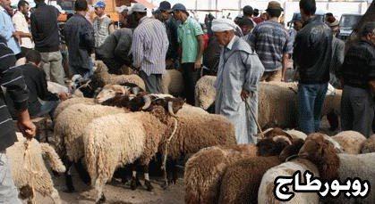 السوق الأسبوعي بسلوان.. الحُولِي غَالِي بَزّافْ هَادْ العَامْ