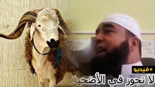 الشيخ نجيب الزروالي.. أربع لا تجوز في الأضحية
