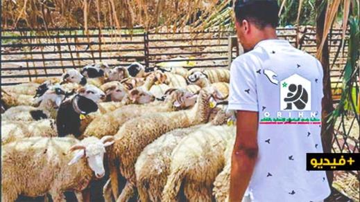 للسنة الثالثة على التوالي.. منظمة رامي توزع أضاحي العيد على المحتاجين وتشكر المحسنين المساهمين