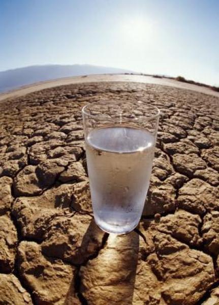 المندوبية السامية للمياه والغابات: المغاربة مهددون بشدة بالعطش