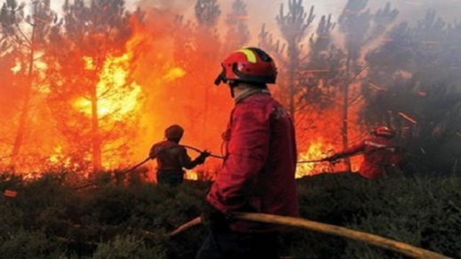 """حريق مهول بجبل """"تامرسيت"""" في حاسي بركان ووعورة التضاريس تعقّد مأمورية رجال المطافئ"""