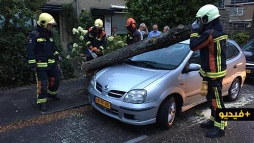 """العاصفة """"فرانسيس"""".. حوادث بالجملة واضطرابات في كافة أرجاء هولندا"""