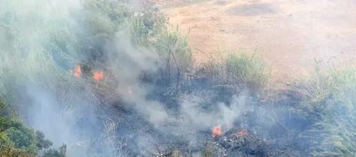 حريق مهول يلتهم مساحة مهمة من الغطاء النباتي ببني شيكر