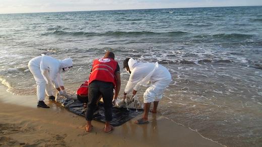 """مياه شاطئ """"الداليا"""" ضواحي طنجة تلفظ جثة رجل متحللة"""