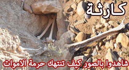 """عظام بشرية متناثرة في واد بمقبرة """"سيدي سليمان"""" بأولاد استوت والسلطات تنتهك حرمة الأموات"""