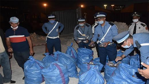احباط تهريب شحنة مهمة من مخدر الشيرا كانت مدسوسة وسط الحجارة على متن 6 حاويات