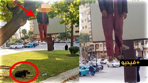 شاهدوا.. انتحار حارس سيارات وسط الشارع العام وكلبه رفض التخلي عنه