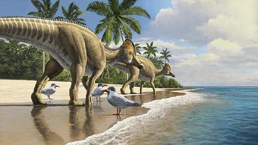 اكتشاف ديناصور بمنقار بط عمره 66 مليون سنة في المغرب