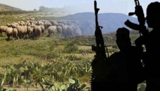 """تونس.. إرهابيون """"يذبحون"""" شابا في ولاية """"القصرين"""""""