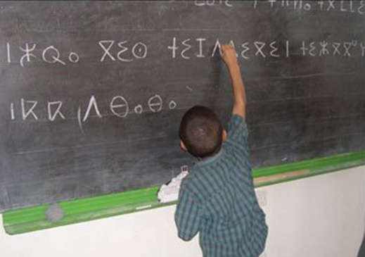 إعداد منهاج جديد لمقرر اللغة الأمازيغية في المؤسسات التعليمية