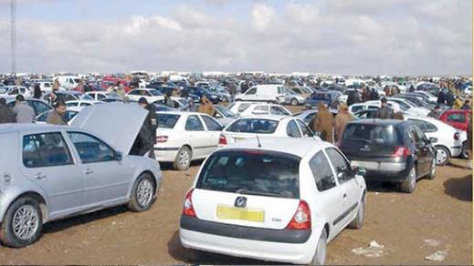 الجزائر.. فضيحة سيارات البوليساريو تهز قصر المرادية