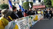 شباب جمعويون من الناظور يشاركون في المنتدى الاجتماعي بتونس