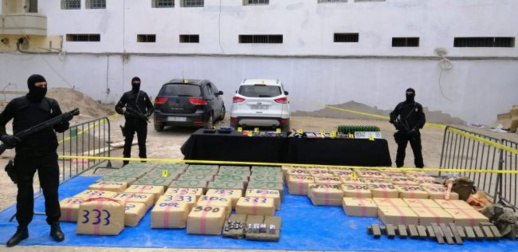 إلقاء القبض على سيدة و5 أشخاص ينشطون في شبكة للتهريب الدولي للمخدرات