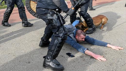 شاهدوا.. الشرطة الهولندية تستعمل الهروات والكلاب لتفريق محتجين