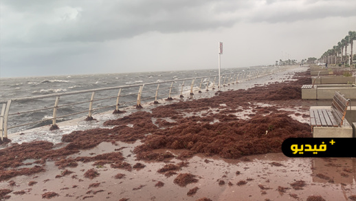 هكذا تحول كورنيش الناظور بسبب الأمطار وهيجان البحر