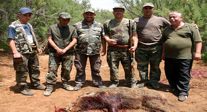 جمعية قلعية للرماية والقنص تشن حملة على الخنازير البرية باولاد ستوت بزايو