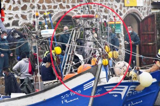 شاهدوا.. حجز قوارب صيد مغربية من طرف إسبانيا بدعوى قتل الدلافين