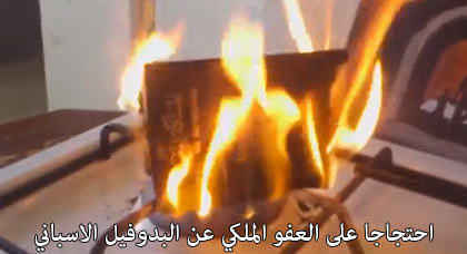 بالفيديو.. مواطنة مغربية بهولندا تطالب بإسقاط جنسيتها ومُواطن يحرق جواز سفره