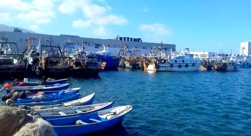 عامل إقليم الناظور يتدخل لإعادة الممتهنين بقطاع تجارة السمك بالجملة ببني انصار للعمل بالميناء