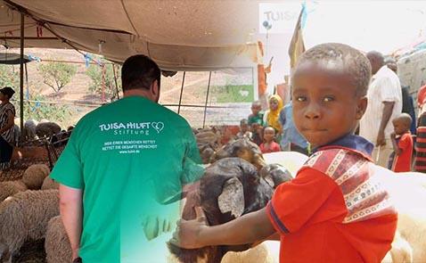 مؤسسة ثويزا الألمانية بالمغرب توزع 470 أضحية على الأسر الفقيرة