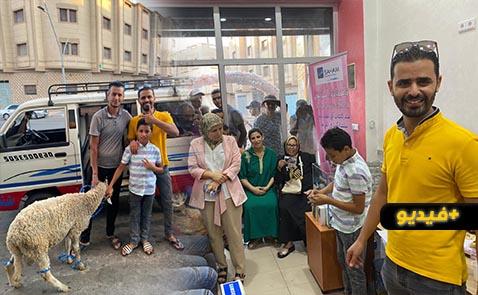 تأمينات السباعي تنظم قرعة الفوز بجوائز عديدة بينها كبش العيد