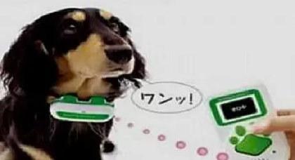 تطور تكنولوجي جديد ومدهش : إختراع جهاز يترجم نباح الكلاب