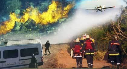 حريق مهول يشب بغابة كوركو ورجال المطافئ يجدون صعوبات في إخماد النيران
