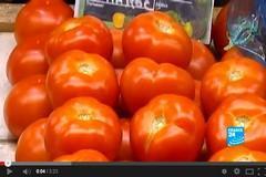 طماطم المغرب بفرنسا