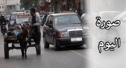 صورة اليوم : وتستمر العربات المجرورة بالحمير تعرقل حركة السير والمسؤولون في دار غفلون