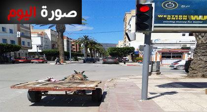 صورة اليوم : عربة مجرورة بحمار تتوقف عند علامة قف بالناظور