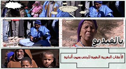 برنامج ألماني يتناول عادات وتقاليد المغرب المنسي ويتطرق للطب التقليدي والأعشاب المثيرة للجنس