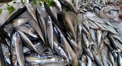 عكس أسعاره المتدنية بالحسيمة .. سمك السردين بالسوق الأسبوعي للدريوش يقترب من العشرين درهما