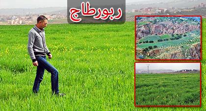 """مزارعون لناظورسيتي: الأمطار أعادت """"الخضرة"""" الى مرتفعات الريف وأسالت المياه في الأودية والسواقي"""