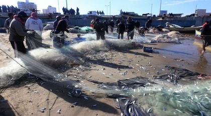 تروكوت ستعرف إنشاء مركز لتجميع الأسماك سيستفيد منه 100 قارب وهذا هو المبلغ المخصص