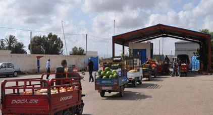 خطير.. تجار الخضر والفواكه بالناظور يتعرضون للنهب والسرقة من طرف مدمني المخدرات والخمور