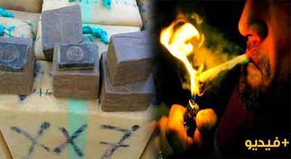"""بالأرقام.. المغرب يحتل الرتبة الأولى عالميا في إنتاج """"الحشيش"""" و 600 ألف شاب مدمن على المخدرات"""