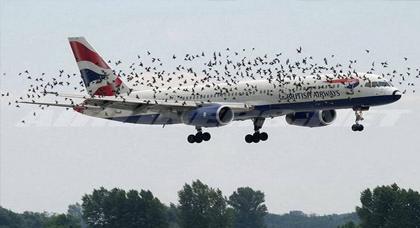 قمة الانسانية.. شيفور طائرة خوى 33 طن ديال المازوط باش ينقذ واحد السيدة مريضة كانت راكبة معاه