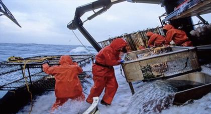 الاتحاد الأوروبي يرخص لمفاوضات الصيد مع المغرب