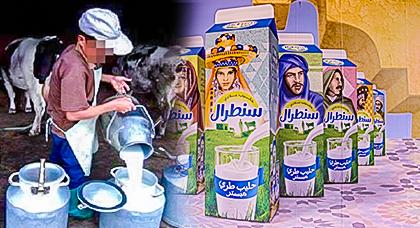 """شركة الحليب """"سنطرال"""" تفرض شروطا تعجيزية على الفلاحين لتعويض خسائر المقاطعة"""