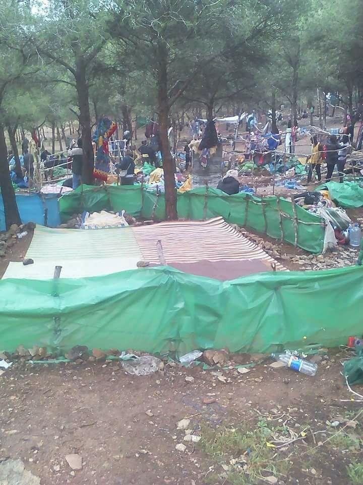 في ثاني يوم من رمضان.. سلطات الناظور تقوم بإخلاء مخيم لمهاجرين من جنوب الصحراء