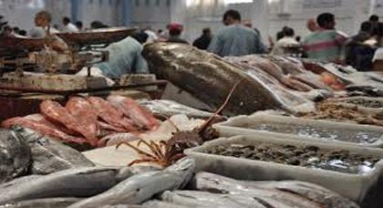 حملة مقاطعة السمك مستمرة في البوادي وهذا ما قامت به الساكنة نواحي الحسيمة