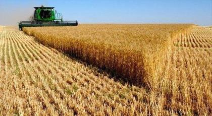 أخنوش: مردودية الحبوب خلال هذا الموسم الفلاحي سابقة في تاريخ المغرب لهذا السبب