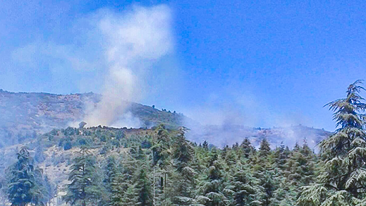 بالصور.. النيران تندلع مرة أخرى بغابة مليئة بأشجار البلوط بنواحي الحسيمة