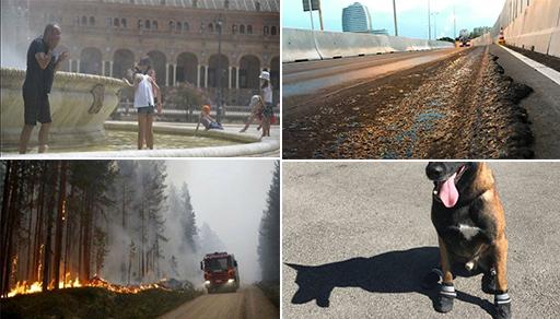 إرتفاع غير مسبوق للحرارة بأوروبا.. ذوبان الإسفلت بهولندا كلاب بأحذية بالنمسا وحرائق بإسبانيا