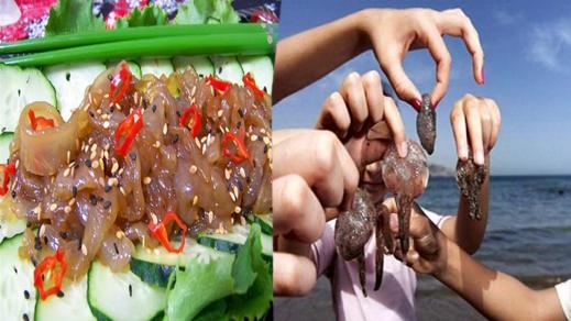 شاهد كيف تتحول قناديل البحر التي تلسع أجساد المصطافين بالريف إلى وجبات لذيذة في إسبانيا