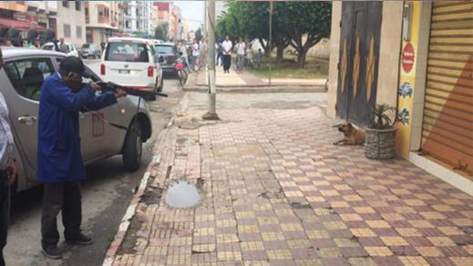 """جمعية """"أمم للدفاع عن الحيوان"""" تصدر بيانا استنكاريا على خلفية إعدام كلب رميا بالرصاص بالناظور"""