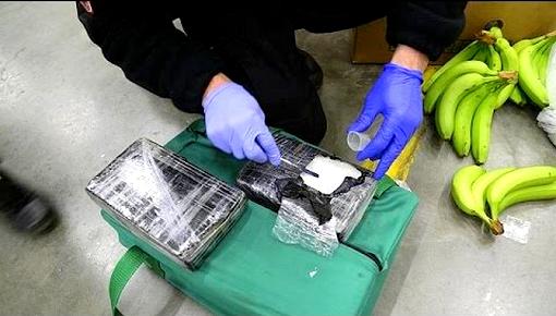 ضربة جديدة لشبكات تهريب المخدرات.. حجز أزيد من 6 أطنان من الكوكايين واعتقال 16 شخصا بإسبانيا